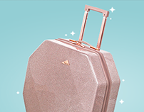 kensie luggage animation
