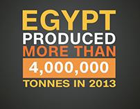 CNNi AfricaView: Egypt Citrus