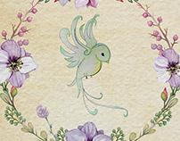 my Hummingbirds ♥