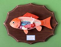 Anatomy of Nishiki-Koi Fish #2