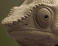 Chameleon - Organic Modeling