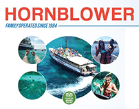 Hornblower Cruises Board