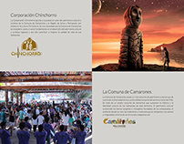 Website Corporacion Chinchorro