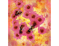 Flowers and Bees on Orange