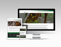 Webdesign Vlas Veterinair