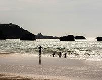 Photo de surf en Aquitaine