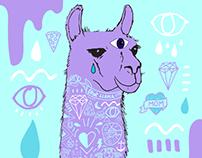Rapper Llama Mama