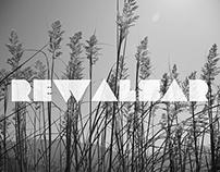Rewalsar