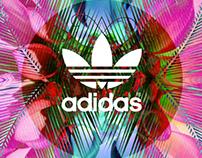 Adidas Originals w Kris Wu