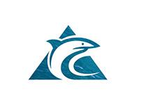 Surfing Logos 2018