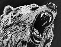KODIAK bear illustration