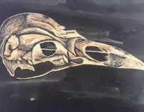 Bird Skull Mixed Media Piece