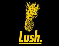 Hair Product Branding