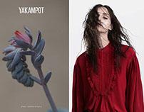 YAKAMPOT F/W