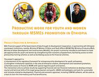 UNIDO Ethiopia project factsheet