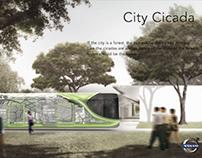 CityCicada