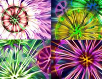 Macro Color - VJ Loop Pack (6in1)