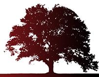 Logo/Sapoticast