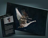 Foy Vance - Website Design
