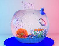 Swim | 3D Modelling