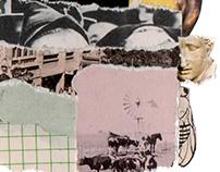 Las Olas // Collage Reseña