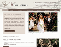 Palm Strings - Classical to Contemporary Music Group