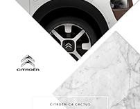 Citroën C4 Cactus Look Book