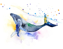 Whale swimming in watercolor