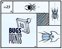 Bugs + Stones - Prints