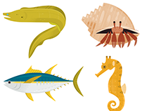Monterey Bay Aquarium Icons