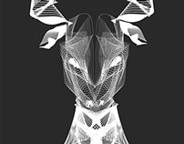 Vector Wire Skulls