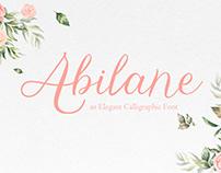 Abilane – Elegant Caligraphic Font