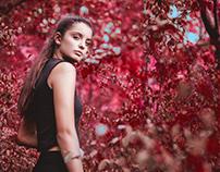 The Secret Garden | Eleonora