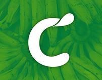Branding: Coconuts Sustainable Foods