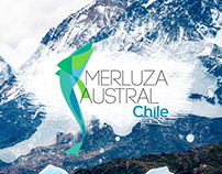Merluza Austral Chile | Web, Campaigns & Social Media