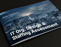 IT Org. Design & Staffing Assessment