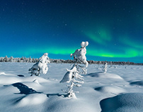 WINTER DREAMS IN LAPLAND