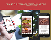 Pet Match App