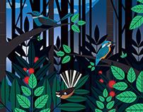 Illustration: Birds
