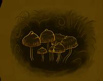 Hongos Mushrooms - practicando