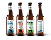 Modern Mountain Brewing Co.