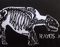 Rayos XTecnica Kiri-e