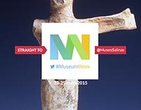 Salinas - MuseumWeek 2015