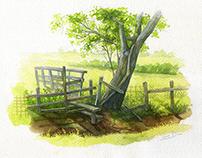 Watercolor - rural landscape