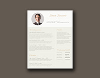 Free Gold Themed Resume Template
