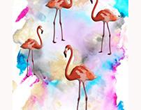 flamingo ecoline
