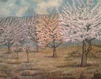 Paisaje serrano con almendros en flor