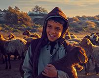 Bedouin Livestock Dealers