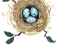 Birds live in nests.