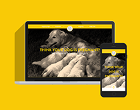 Plan Puppyhood - Branding, Web Design, UX/UI
